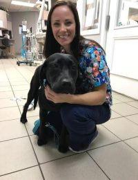 Katie, Veterinary Technician Assistant